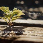 Frasi sulla Quarantena: Belle, profonde e attuali