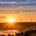 Frasi d'amore in francese: Le più delicate (con traduzione)